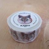 """【新作】PAN LADRoNマスキングテープ/icing cookie series""""malone's diary""""/カモ井加工紙製"""